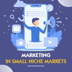Marketing Strategy in Small Niches_New