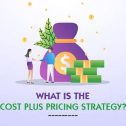 Cost Plus Pricing Strategy Examples