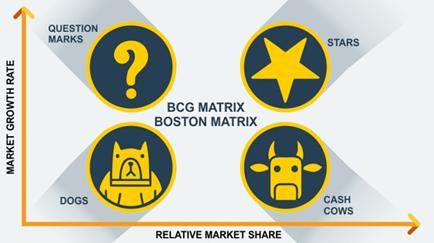 BCG matrix of nestle