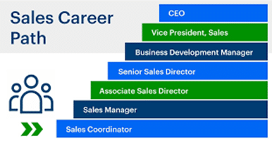 Sales Career Path