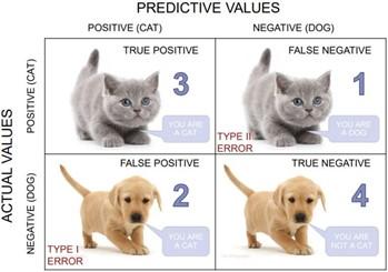A Confusion Matrix Example