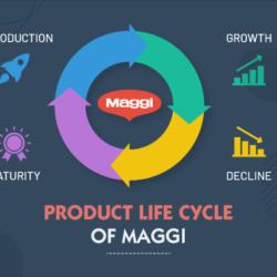 Product life cycle of maggi
